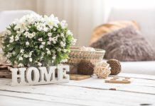 איפה רוכשים פרחים לקישוט הבית?