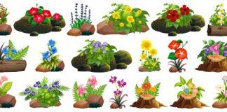 טיפים לשדרוג הגינה הביתית